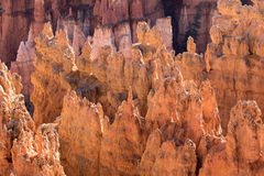 Geology in bryce canyon Royalty Free Stock Photo