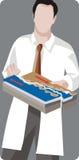 Geology illustration series Royalty Free Stock Photo