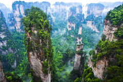 Geology and Landscape of Zhangjiajie. A World Natural Heritage in South China, Zhangjiajie is consisted of more than 3,000 quartz sandstone pillars, and many Royalty Free Stock Photography