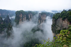 Geology and Landscape of Zhangjiajie. A World Natural Heritage in South China, Zhangjiajie is consisted of more than 3,000 quartz sandstone pillars, and many Stock Images
