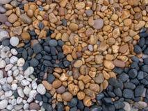 geology Overzeese kiezelstenen op strand, diverse kleuren en types van steen Multicoloured zwarte stenen -, wit, geel stock afbeeldingen