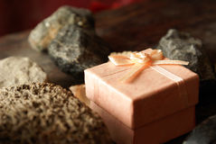 Geologys Gift Royalty Free Stock Image