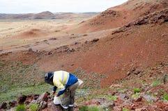 Geoloog Prospecting voor Ijzererts - Pilbara - Australië royalty-vrije stock fotografie
