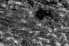 Geometría del hielo Imagenes de archivo