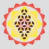 Geometría-Flor sagrada del germen de la vida stock de ilustración