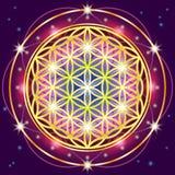 geometria święta Obraz Stock