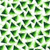 Geometria e natureza, caos e ordem Imagem de Stock Royalty Free