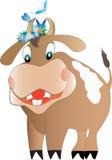 Good-natured bull Stock Photo