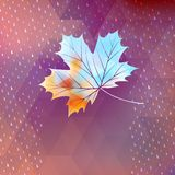 Geometric background card with maple leaf. EPS 10 Royalty Free Stock Photography