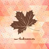 Geometric background card with maple leaf. EPS 10 Stock Photography