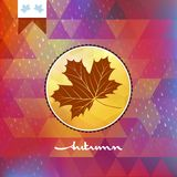 Geometric background card with maple leaf. EPS 10 Royalty Free Stock Photos