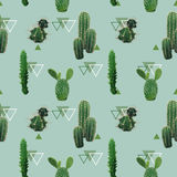 Geometric Cactus Plant Seamless Pattern. Exotic Tropical Summer Botanical Background Stock Photos