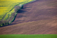 Geometric colorful fields landscape - countryside hills backgrou Stock Images