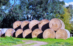 Geometric form of a large stack of hay bales Royalty Free Stock Image