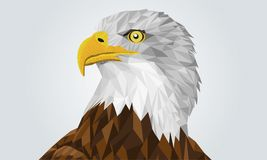 Geometric Illustration of an eagle head – stock illustration