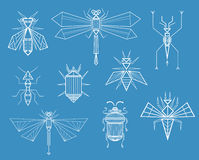 Geometric Insects. Set of different insects, characters line art drawing. Illustration formalized on technical plan. Nature creatures in unusual abstract Royalty Free Stock Photos