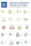 Geometric leaf icon set Royalty Free Stock Photos