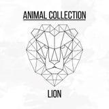 Geometric lion head. Geometric animal lion head background vector illustration