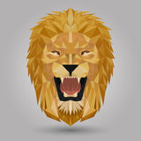 Geometric lion. Head design on gray background Royalty Free Stock Photos