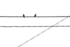 Geometric minimalism, birds. Geometric minimalism of two birds sitting on the wires early morning overcast Stock Photo