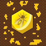 Geometric pattern with honeycomb and bee in the center. Flat background illustration stock illustration