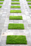 Geometric Paving and Lawn Stock Photo