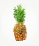 Geometric pineapple Stock Images