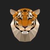 Geometric polygon tiger illustration Stock Images