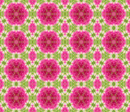 Geometric seamless pink pattern. Set of Geometric seamless pink pattern Stock Images