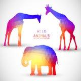 Geometric silhouettes animals Elephant Giraffe Stock Photos