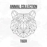 Geometric tiger head. Geometric animal tiger head background Royalty Free Stock Image