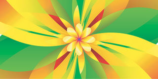 Geometric yellow flower texture. Abstract background Stock Images