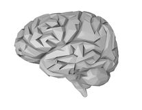 Geometrical 3d brain illustration, isolated on white. Royalty Free Stock Images