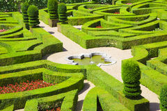 Geometrical hedges. Amazing gardens from Villandry chateau, France Stock Photos