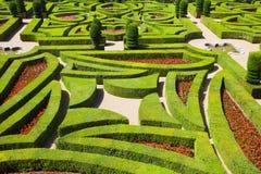 Geometrical hedges Stock Photo