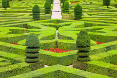 Free Geometrical Hedges Royalty Free Stock Photography - 10678977