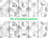Geometrical seamless pattern. The drawn lemon. Stock Photos