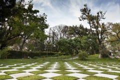 Geometrical struktura Zdjęcie Royalty Free