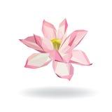 Geometrisch Bloemenwater Lily Lotus Elements voor ontwerp Royalty-vrije Stock Afbeeldingen