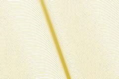 Geometrisch Conceptueel lijn als achtergrond, kromme & golfpatroon voor ontwerp Digitaal, het trekken, behang & vorm stock illustratie