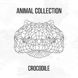 Geometrisch krokodilhoofd Royalty-vrije Stock Afbeelding