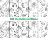Geometrisch naadloos patroon De getrokken citroen Vector Illustratie