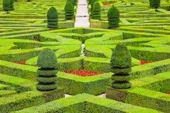 Geometrische hagen Royalty-vrije Stock Fotografie