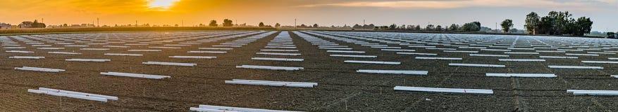 geometrische ontwerpen van steunpolen in landbouwgronden Stock Afbeeldingen