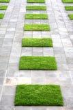 Geometrische Pflasterung und Rasen Stockfoto