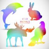 Geometrische Schattenbilder von Tieren, Delphin, Kaninchen Lizenzfreies Stockfoto