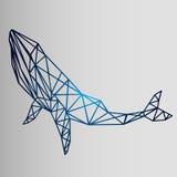 Geometrische stijl - schets van een walvis Stock Foto