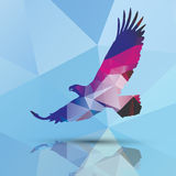 Geometrischer polygonaler Adler, Musterdesign Lizenzfreies Stockfoto