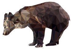 Geometrischer Polygonbär Stockfotografie