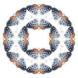 Geometrisches Schmetterlingsformisolat auf weißem Hintergrund Lizenzfreie Stockfotos